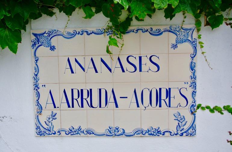Ananas insulele Azore Sao Miguel vizita