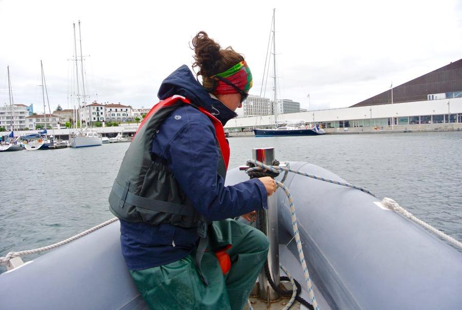 Croaziera balene delfini insula Sao Miguel 10