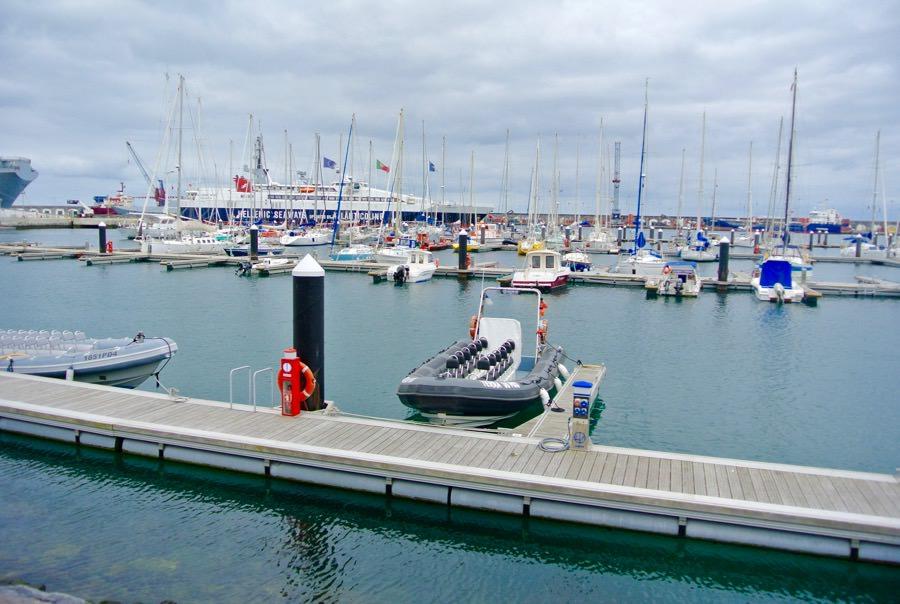 Croaziera observat balene insula Sao Miguel Azore marina