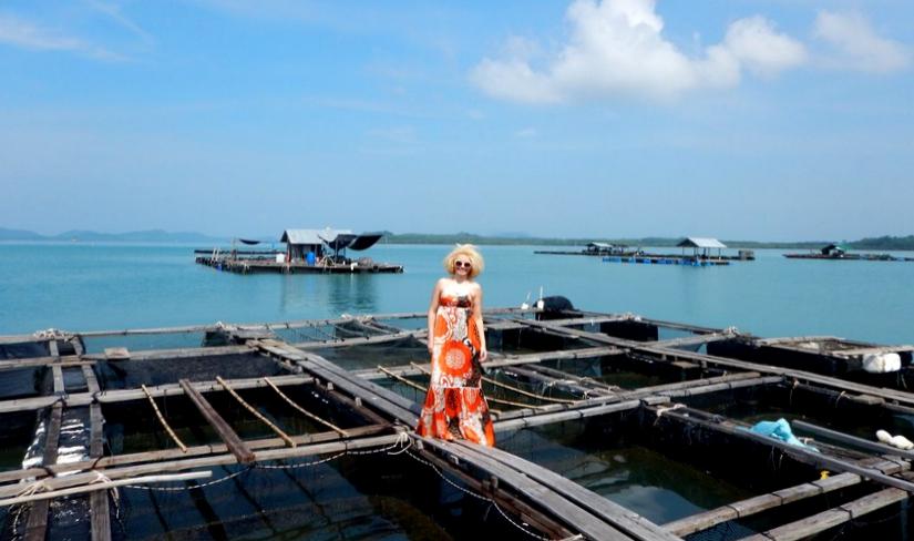Krabi ferma pescuit golful Phang Nga
