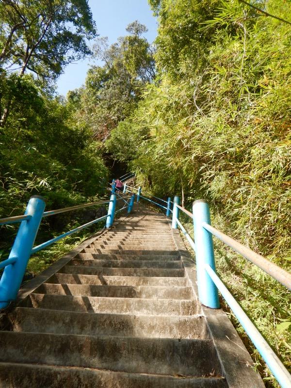 Krabi Jungle Safari izvoare termale Templul Grota Tigrului 7 14