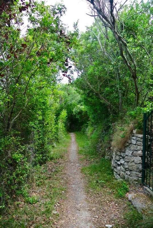 Satul pescăresc Lakka din Paxos 28