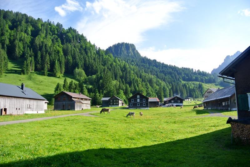 Schönenbach Vorarlberg Austria 15