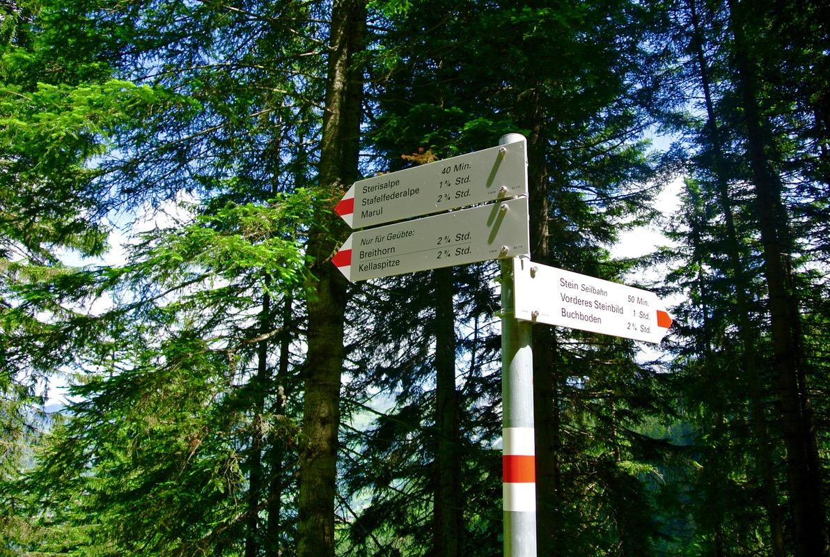 drumetie culinară din Austria Vorarlberg 14