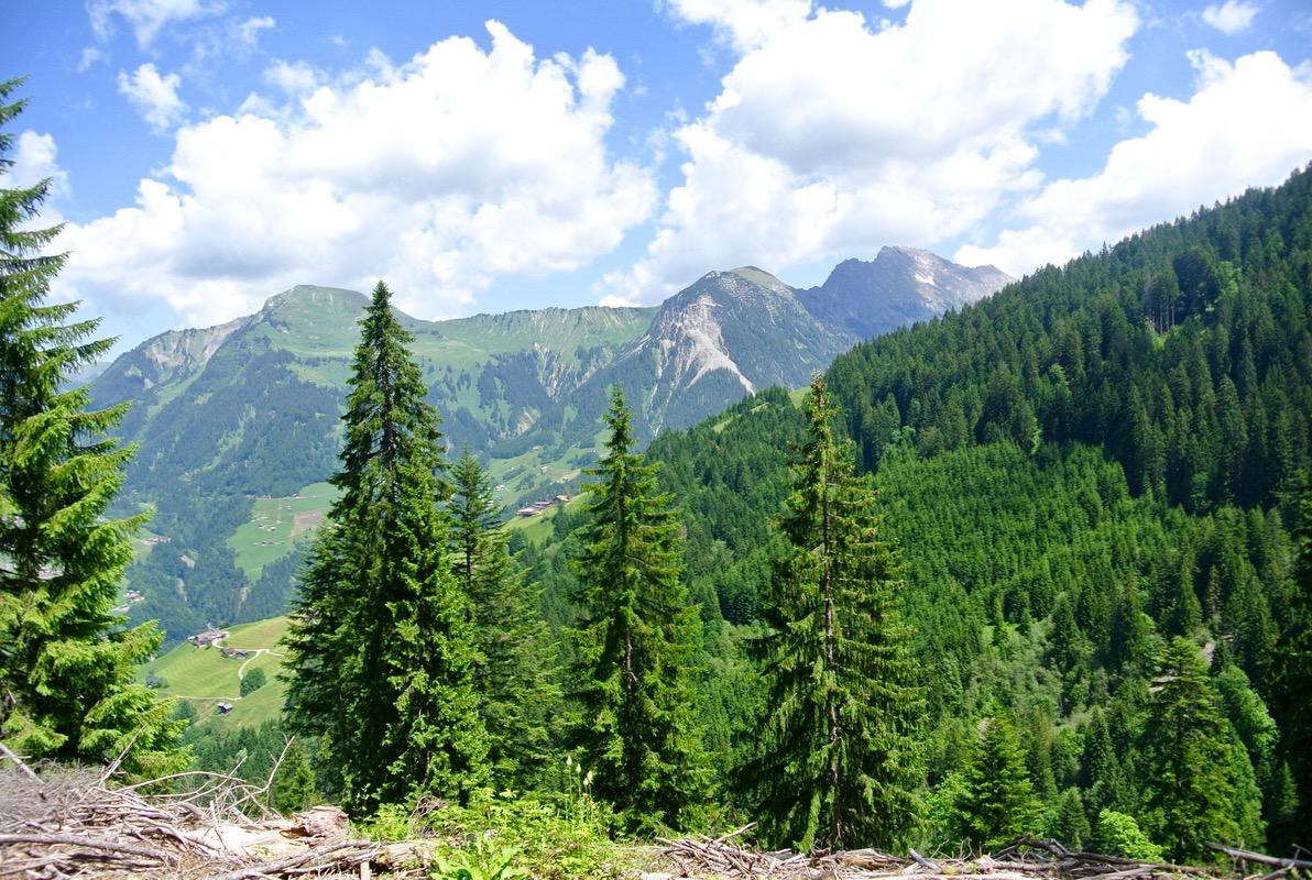 drumetie culinară din Austria Vorarlberg 15