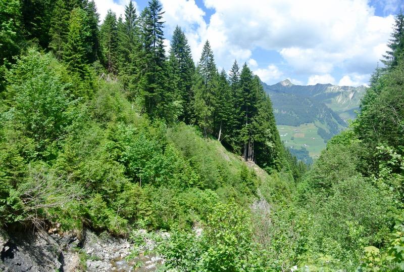 drumetie culinară din Austria Vorarlberg 11