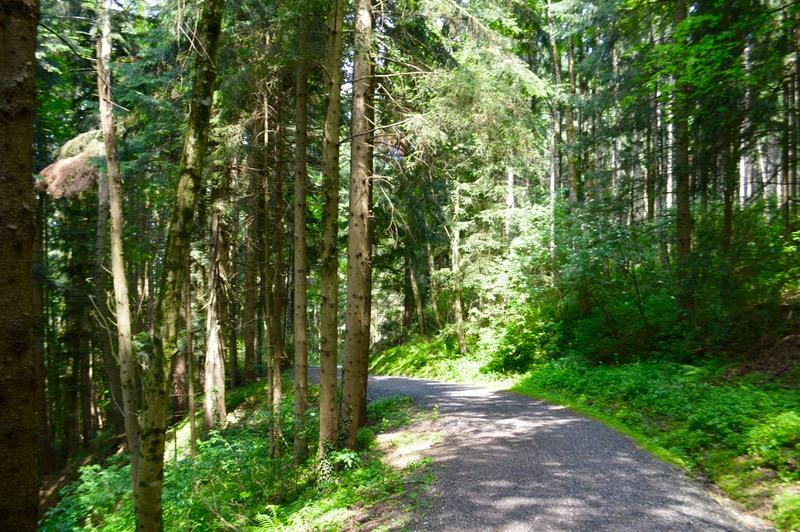 Atractii turistice în Bregenz Vorarlberg drumetie 2