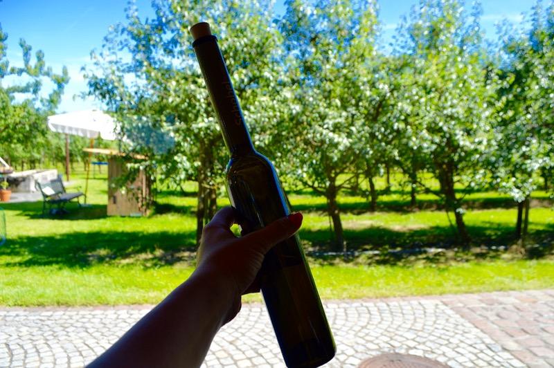 Schnapps si cele mai bune fructe uscate la Harald Schobel Vorarlberg 6