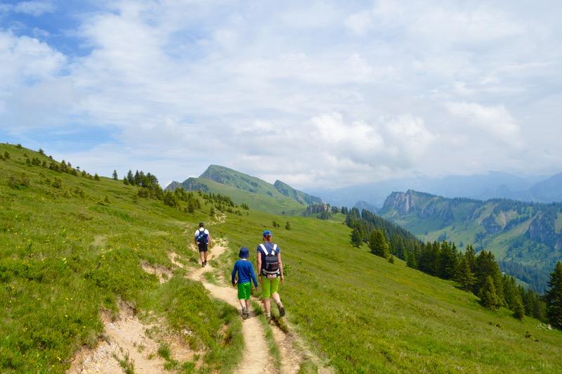 Baumgarten telecabina drumetie ghid Bregenzerwald Vorarlberg Austria atractii turistice1 26