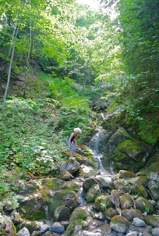 traseu drumetie satulSchönenbach Bregenzerwald Vorarlberg Austria atractii turistice1 25