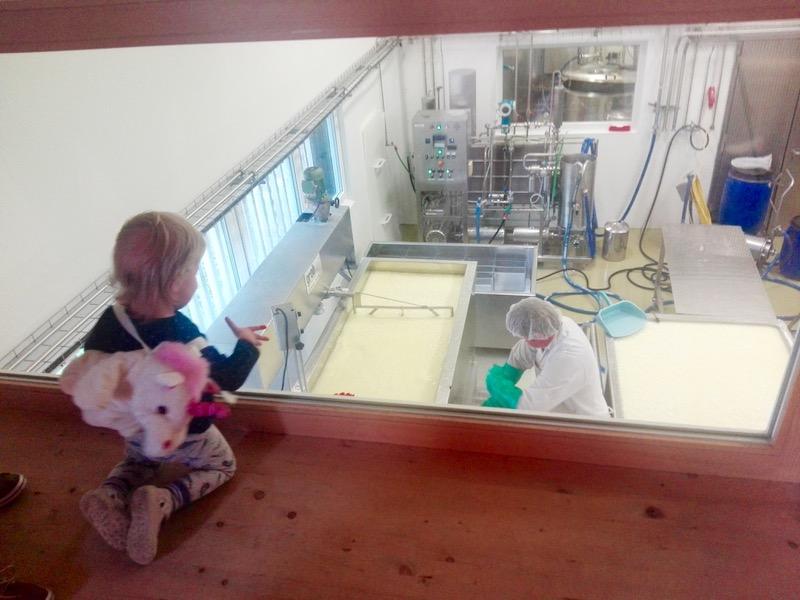 fabrica de lactate si cosmetice Ingo Metzler din Egg Vorarlberg cosmetice zer austria branza