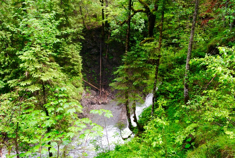 parcul rezervatie a biosferei Grosses Walsertal Vorarlberg vizitam 5