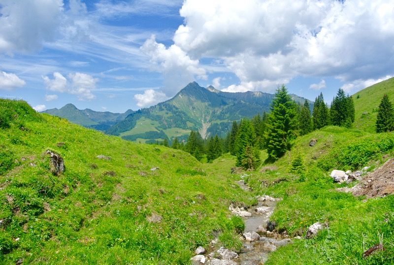 parcul rezervatie a biosferei Grosses Walsertal Vorarlberg vizitam 7