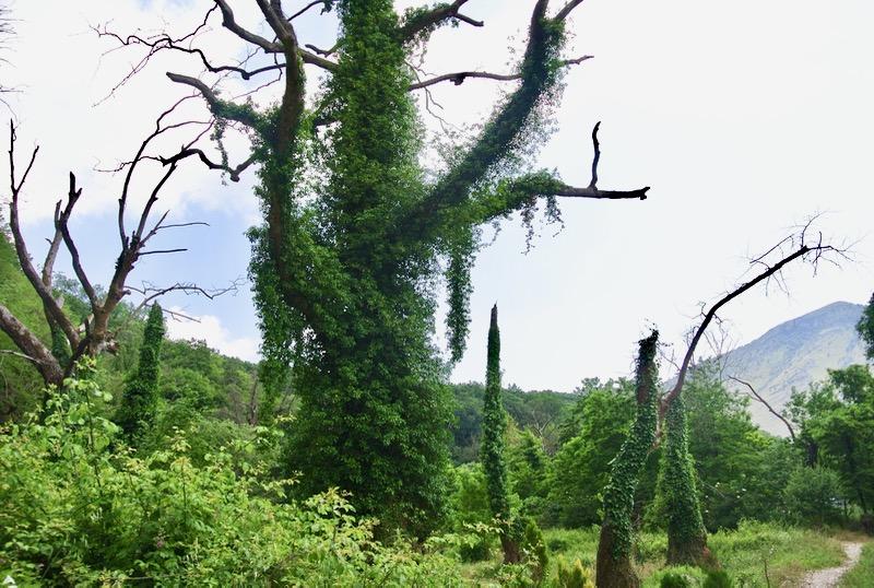 Excursie Optionala insula Corfu Albania parc national