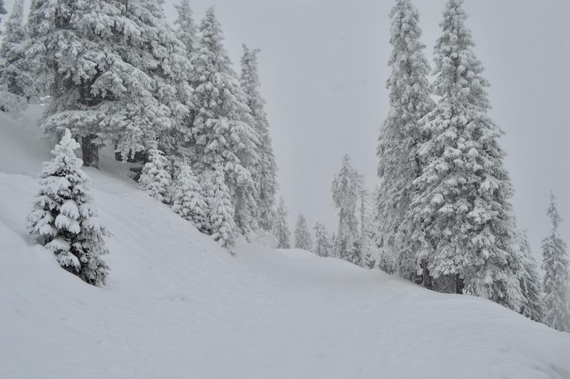 Poiana Brasov Iarna schi snowboard transport 16