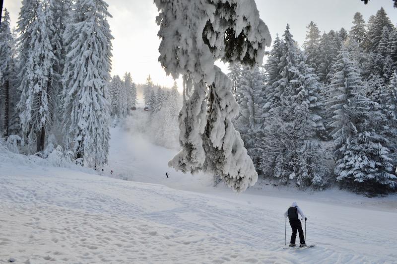 Poiana Brasov Iarna schi snowboard transport 14