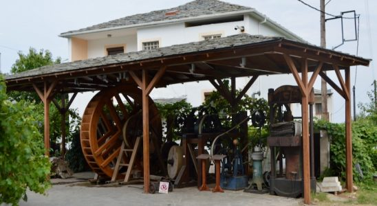 fabrica de ulei de masline Sotirelis satul Panagia Thassos vizita 2