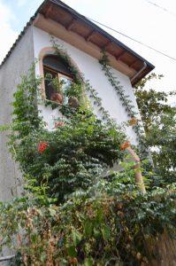 atractii satul Panagia insula Thassos 20