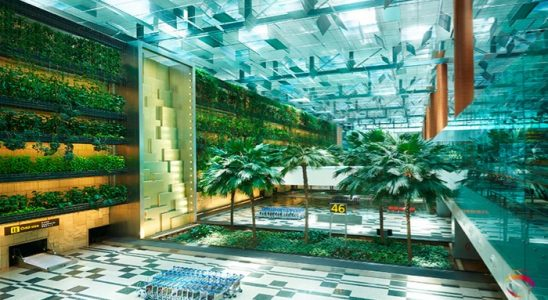 Aeroportul Changi Singapore 2