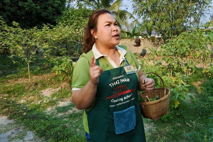 Curs de gatit mancare thailandeza in Chiang Mai Pad Thai supa 1