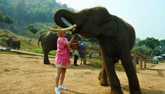 fotografii din Chiang Mai Thailanda acolo 22