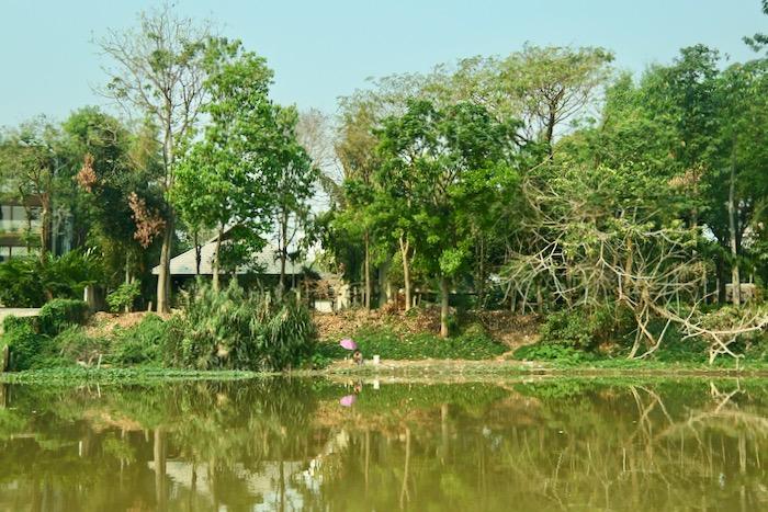 Croazieră pe raul Mae Ping River Chiang Mai 9