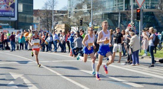Hanovra Maraton despre 16