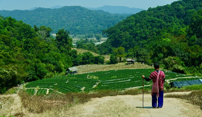 Parcul Național Doi Inthanon Chiang Mai17 trib karen