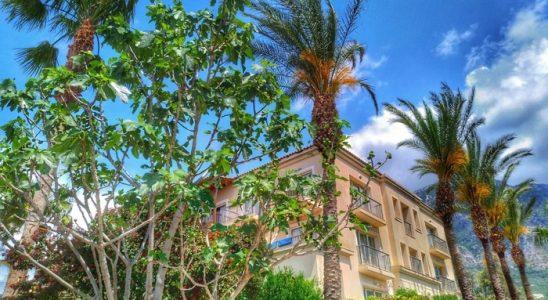 6 motive pentru care Asus ZenFone 4 este ideal în vacanța de vară 8