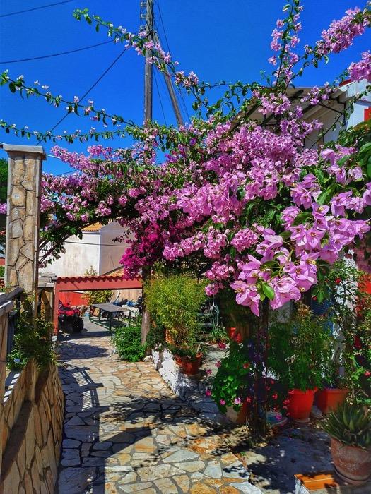 Plaja Porto Timoni Afionas Corfu6 13