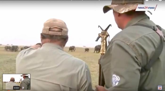 turma elefanti ataca vanatorii namibia 2