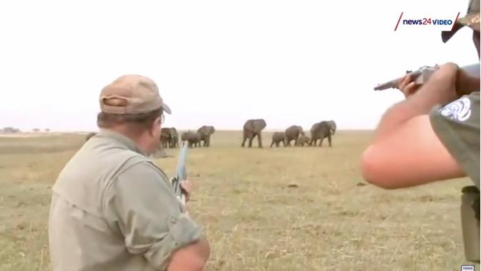 turma elefanti ataca vanatorii namibia 3