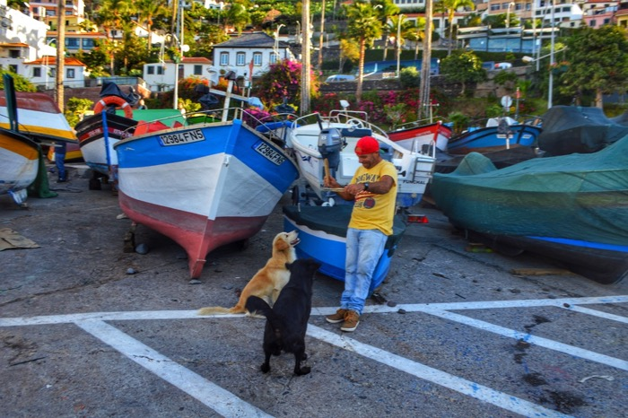 fotografii din Madeira 39