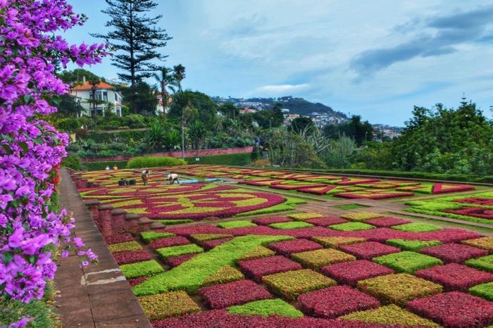 fotografii din Madeira 38