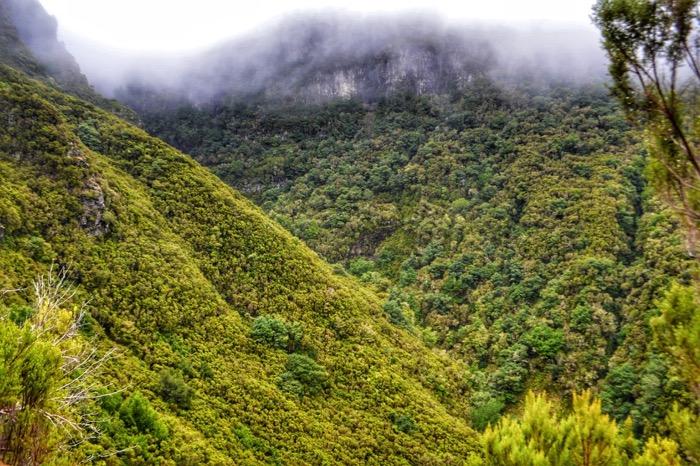 fotografii din Madeira 21