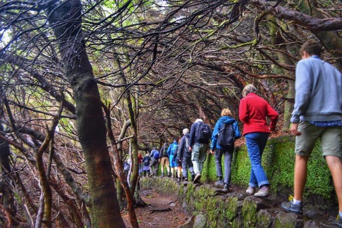 fotografii din Madeira 19