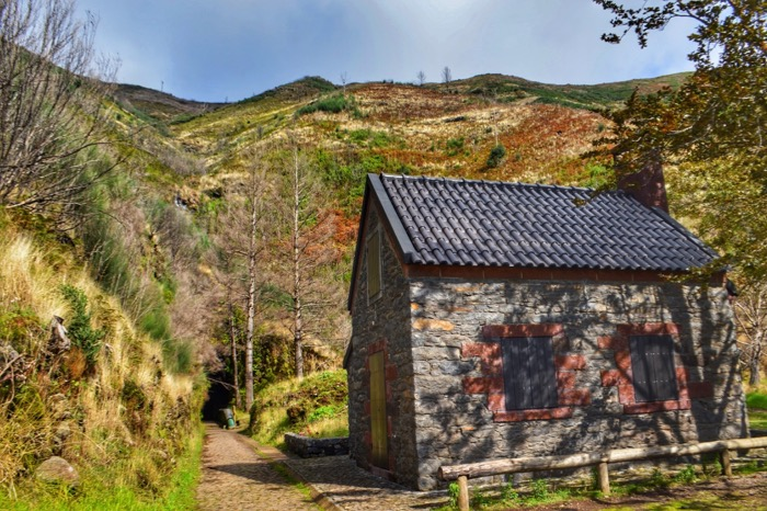 fotografii din Madeira 18