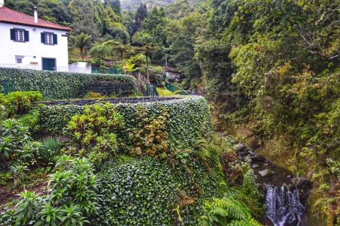 fotografii din Madeira 12