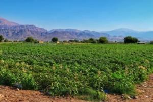 Traseu Iordania trei zile 24