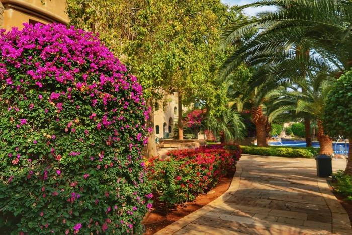 Hoteluri Aqaba Mövenpick31 Iordania 13