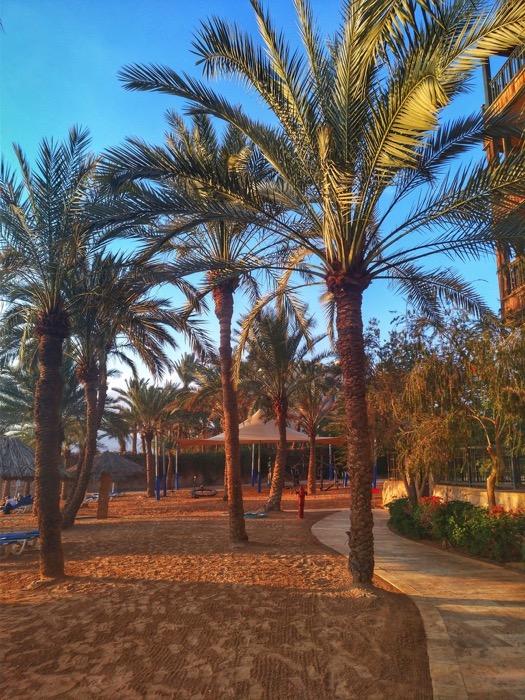Hoteluri Aqaba Mövenpick31 Iordania 3