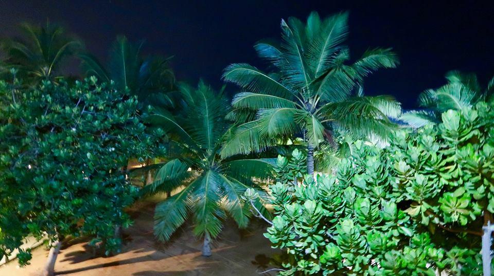 Circuit Sri Lanka: zborul București-Colombo, Hotelul Pegasus Reef 32
