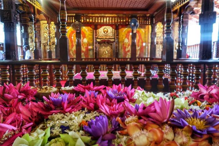 Sri Lanka in fotografii 23