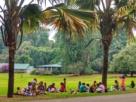Sri Lanka in fotografii 20