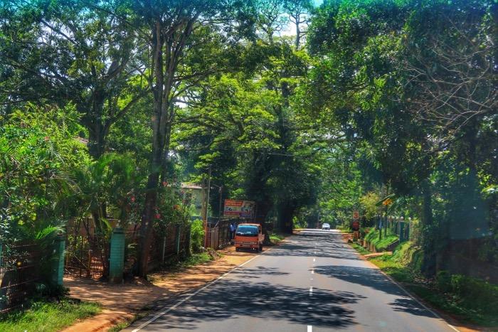 Dambulla Matale Kandy Sri Lanka gradina