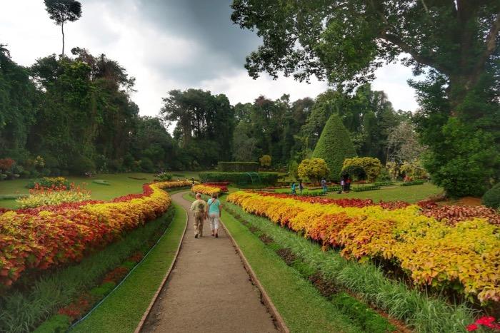 Grădina BotanicăPeradeniya Kandy 12
