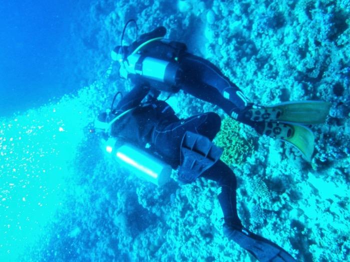 club scufundari aqaba 12