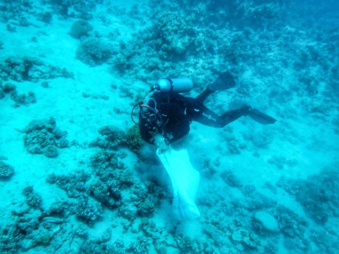 scufundari Aqaba Iordania 18