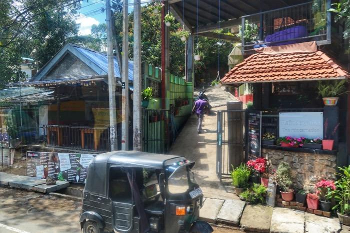 Nuwara Eliya, cascada Ravana Parcul Național Yala Hotel EKHO Safari 4 26