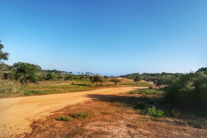Parcul Național Yala 12